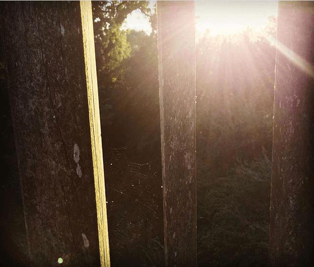 Sunsets & Cobwebs, Brockham