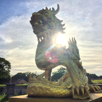 A Golden Dragon